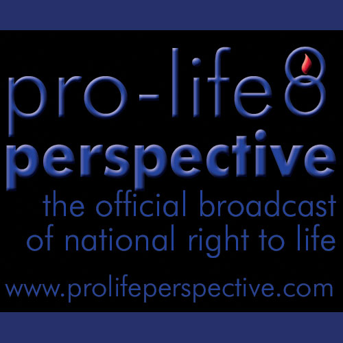 Today on Pro-Life Perspective: Ronald Reagan's Case for Life, Part 3